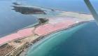 Isola Lunga dal piper