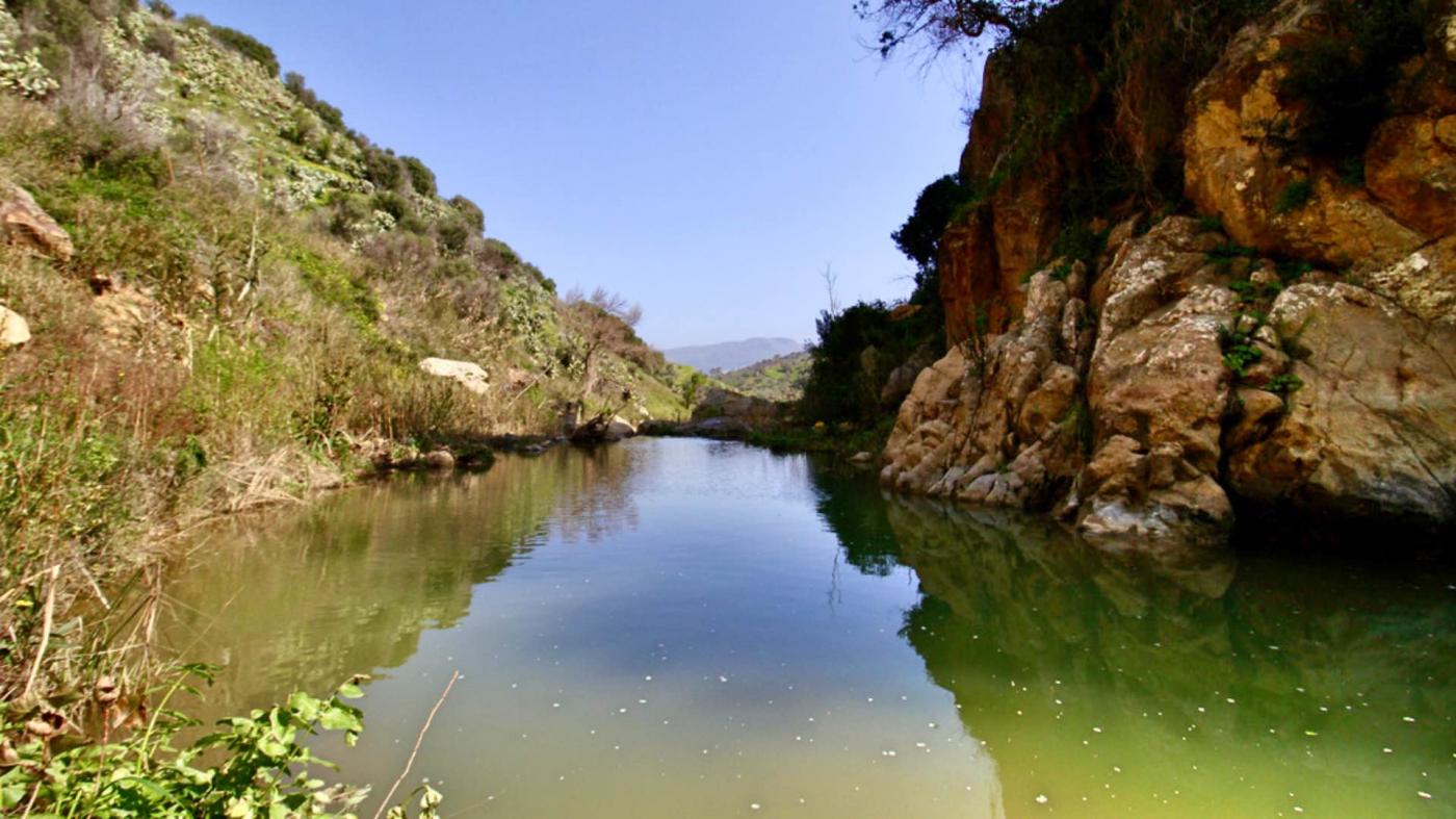 Conca d'acqua vicino alla cascata