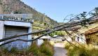 Un albero crollato all'ingresso del settore P