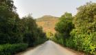 Un tratto di viale Ercole